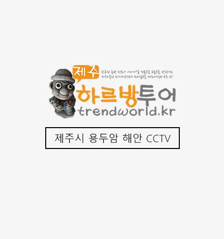 제주용두암해안CCTV.jpg