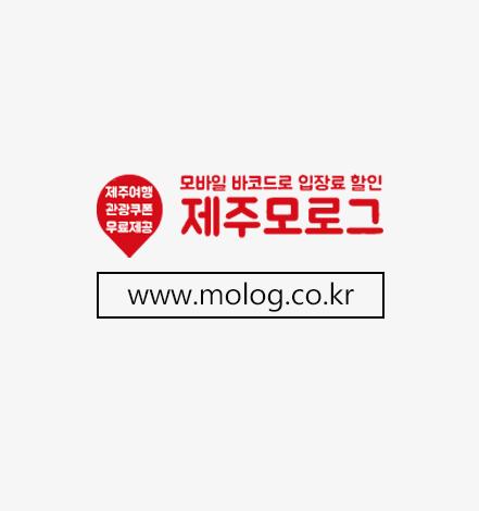 제주모로그_배너.jpg